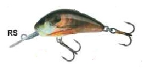 Wobler Salmo Hornet 5F / RS